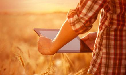 Sociale medier, Word of Mouth og de aktive forbrugere