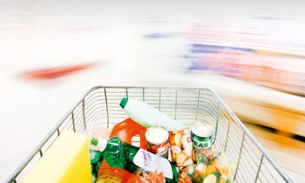Mød den danske shopper anno 2011