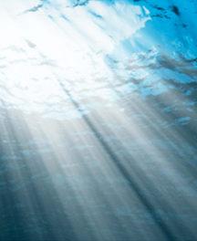 Blå oceaner i danske farvande