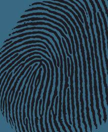 Den visuelle identitet – fra tanker til handling