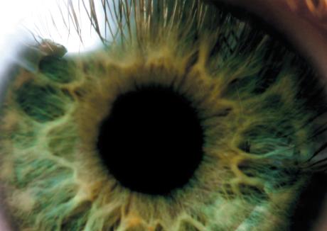 Dine øjne lyver ikke