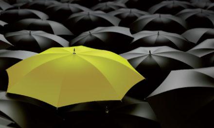 Brandstrategi: Porteføljer og paraplyer