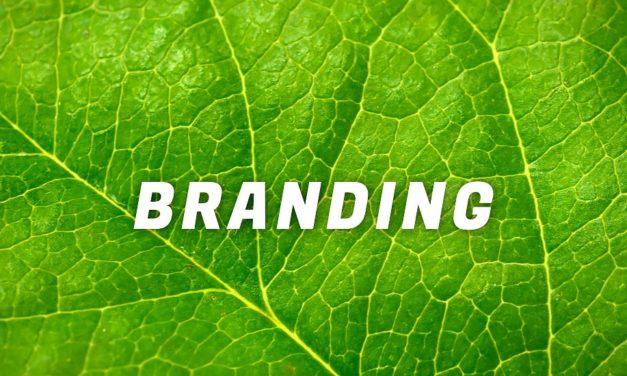 Purposeful Brands – Sådan arbejder du effektivt med brand purpose
