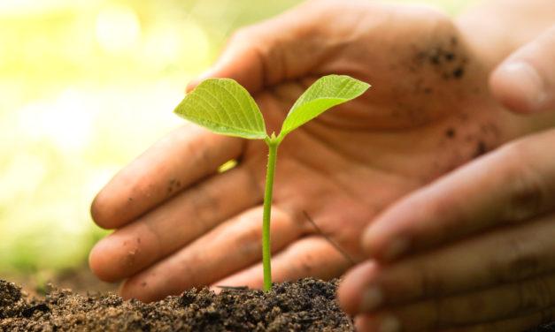 Skal bæredygtighed med i marketing strategien?