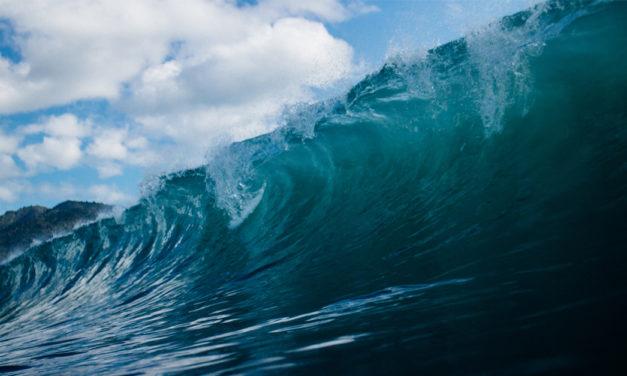 Den globale flodbølge – Video Content
