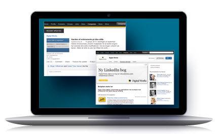 Virksomhedens professionelle rolle på LinkedIn